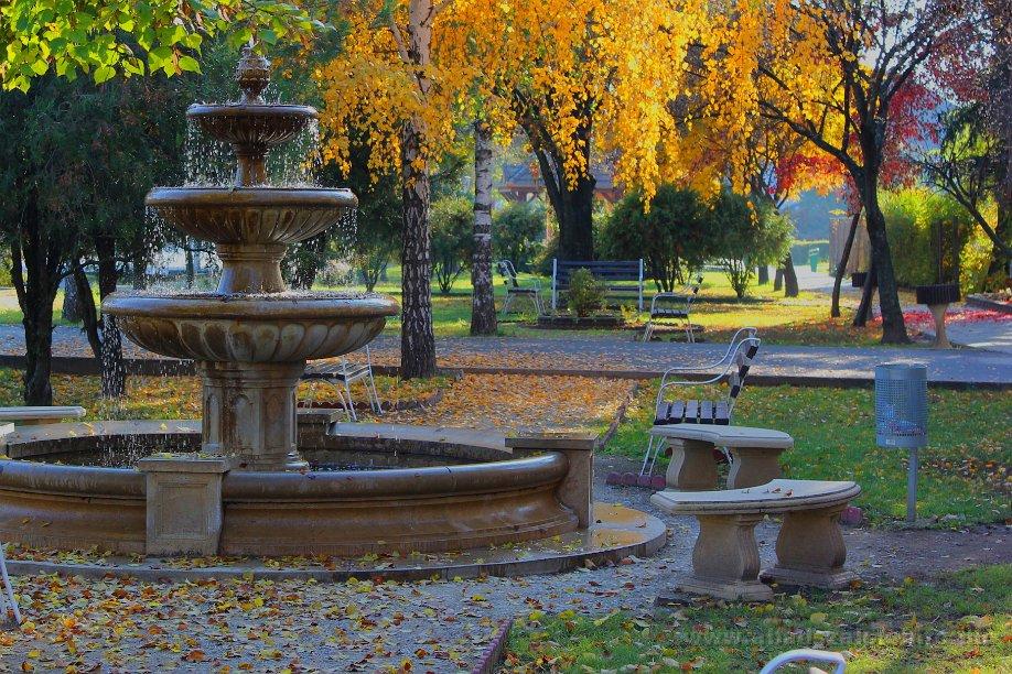 Képekben: Abádszalóki ősz - 2015.11.01